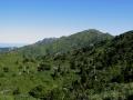 yakushima-central-mountains