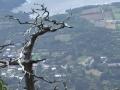 神山展望台から景色